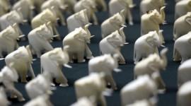 4584862_3_c4d4_des-figurines-d-elephants-en-ivoire_23aff52e0c93ce98c605648fa9226b6b