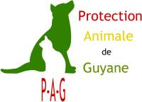 Association Protection Animale Guyane