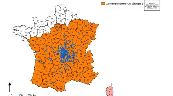 fco-24-aou%cc%82t-2016