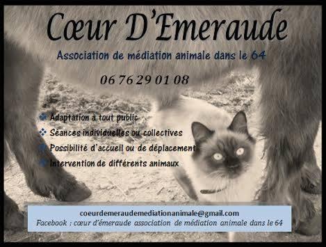 Coeur d'emeraude médiation animale