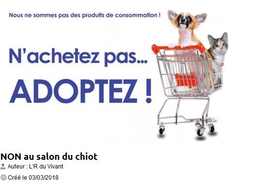 F d ration fran aise de la protection animale liberte for Salon du chiot metz