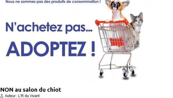 F d ration fran aise de la protection animale libert - Salon du chiot belfort ...